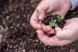 Bauernhofkindergarten-Reimlingen Konzept